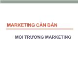 Marketing căn bản - Môi trường marketing
