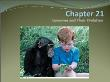 Môn Sinh học - Chapter 21: Genomes and their evolution