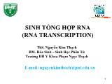 Sinh tổng hợp rna (rna transcription) - Ths. Nguyễn Kim Thạch