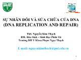 Sự nhân đôi và sửa chữa của dna (dna replication and repair) - Ths. Nguyễn Kim Thạch