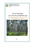 Kiểu rừng khô thưa cây họ dầu ưu thế (rừng khộp) ở Tây Nguyên