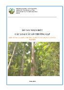 Kiểu rừng lá rộng thường xanh và nửa rụng lá ở Tây Nguyên